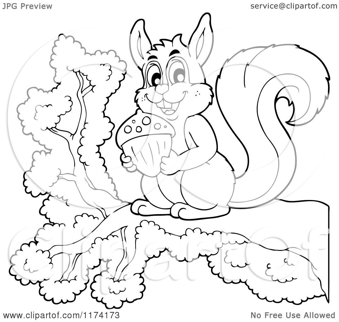 Cartoon Of A Cute Black And White Squirrel Holding An