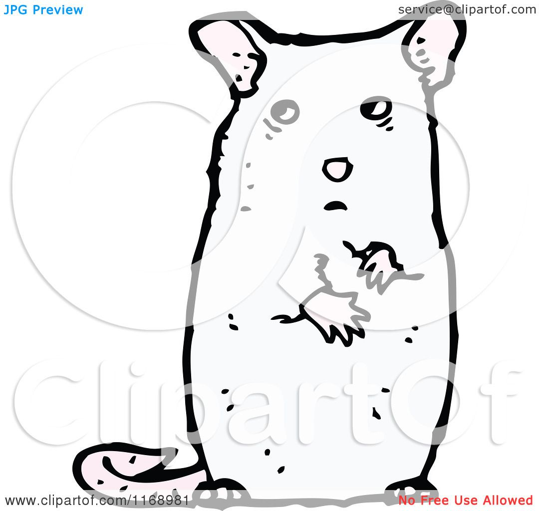 Cartoon Of A White Mouse