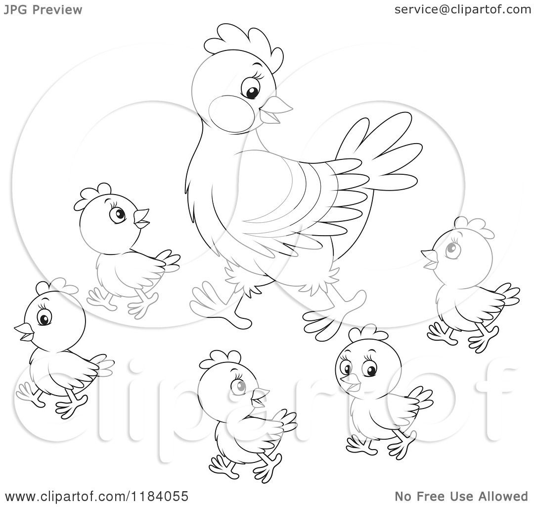 Cartoon Of An Outlined Mother Hen And Baby Chicks