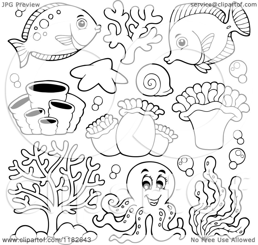 Cartoon Of Outlined Fish Sea Creatures And An Octopus