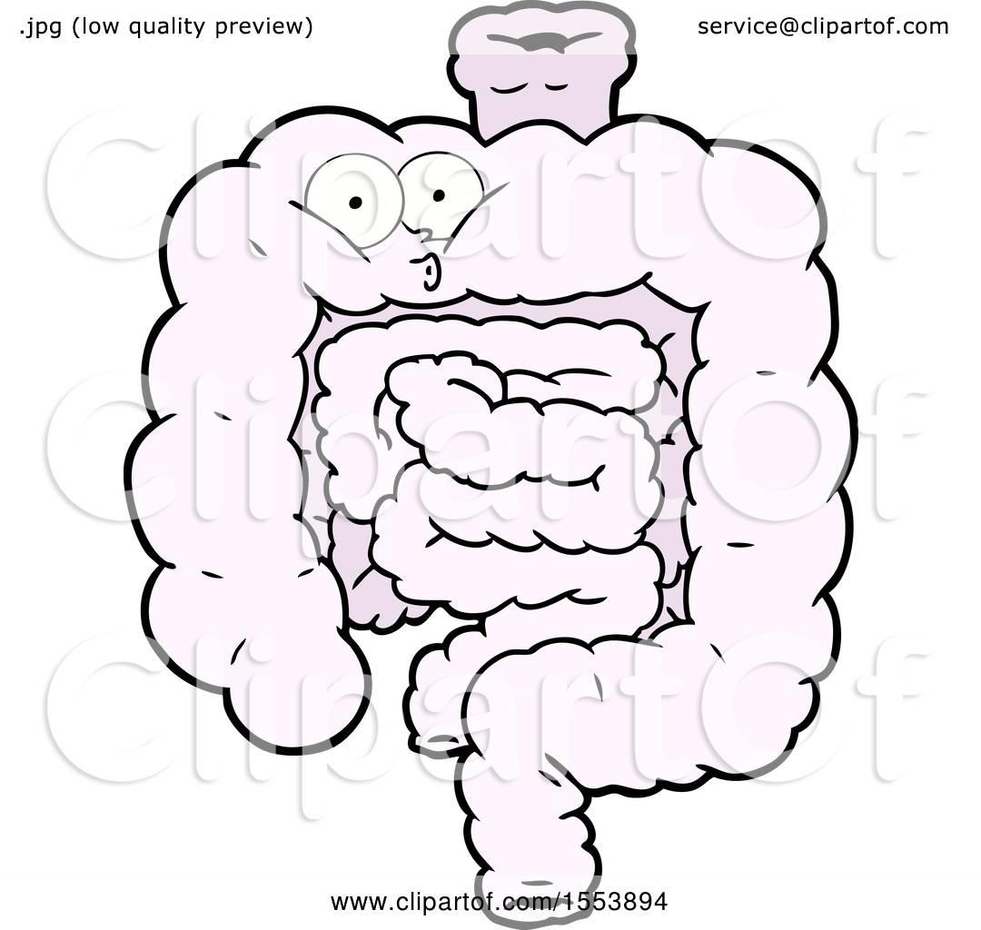 Cartoon Surprised Intestines By Lineartestpilot