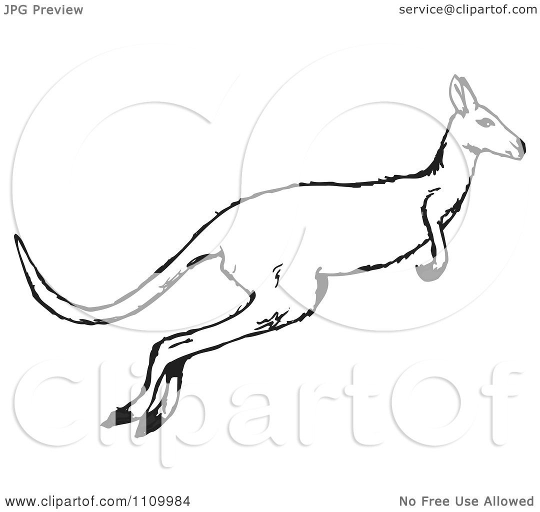 Clipart Black And White Jumping Kangaroo