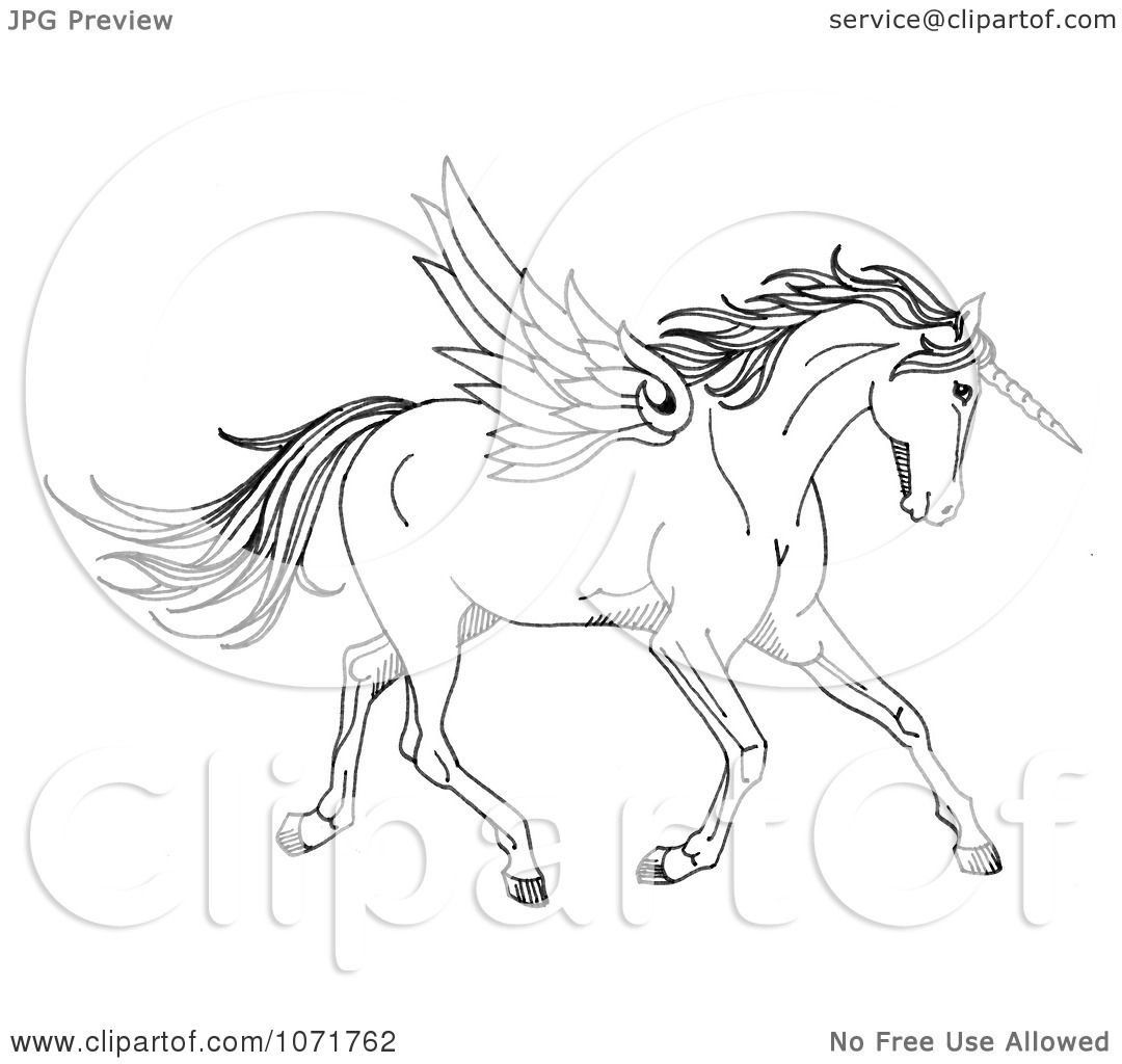 Clipart Black And White Sketched Fantasy Winged Unicorn