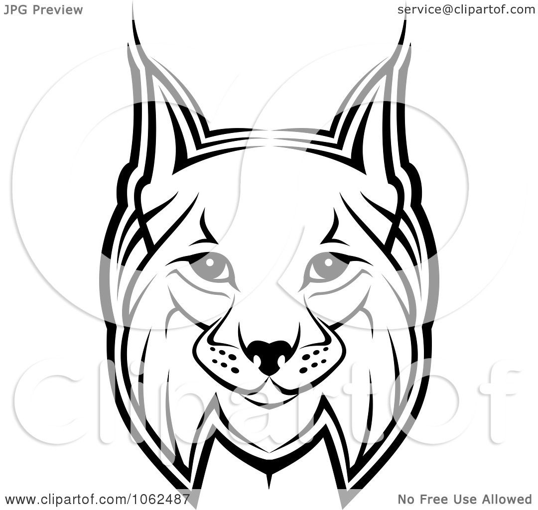 Clipart Bobcat In Black And White 1