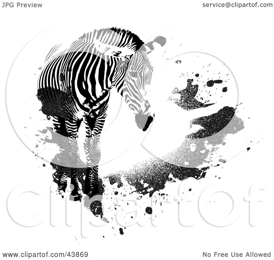 Clipart Illustration Of A Lone Zebra With Black Grunge