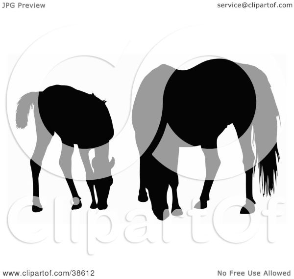 Clipart Illustration of a Silhouette Of A Foal And Horse