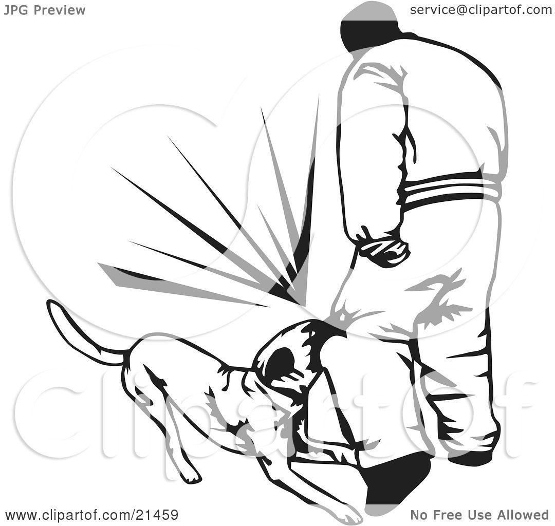 Ulna Bone Dogs