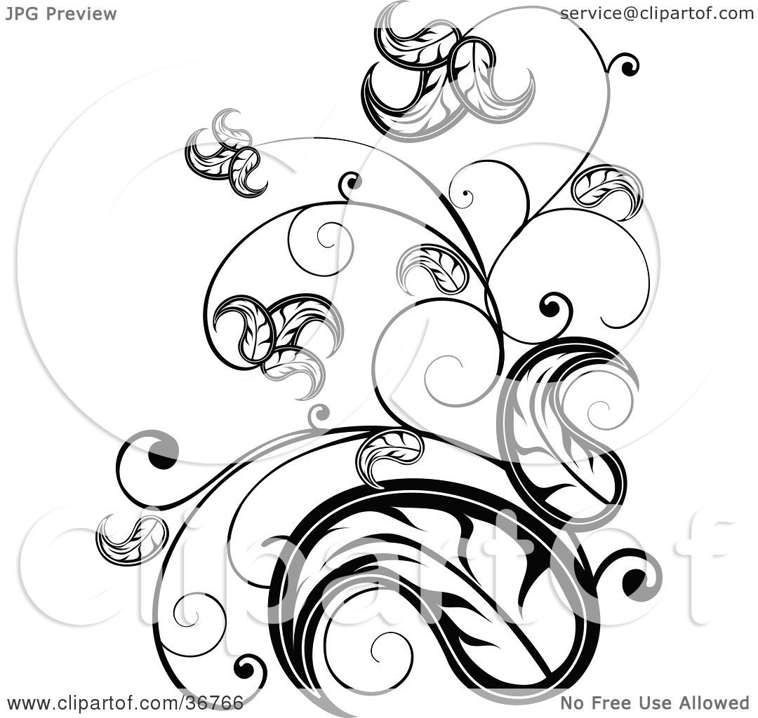 Clipart Illustration Of An Elegant Black And White Leafy Vinescroll Design Accent By