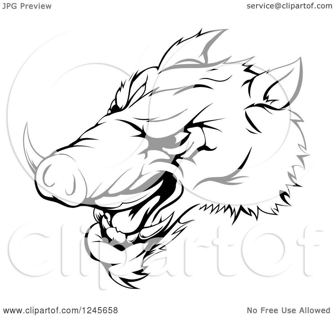 Clipart Of A Black And White Aggressive Razorback Boar