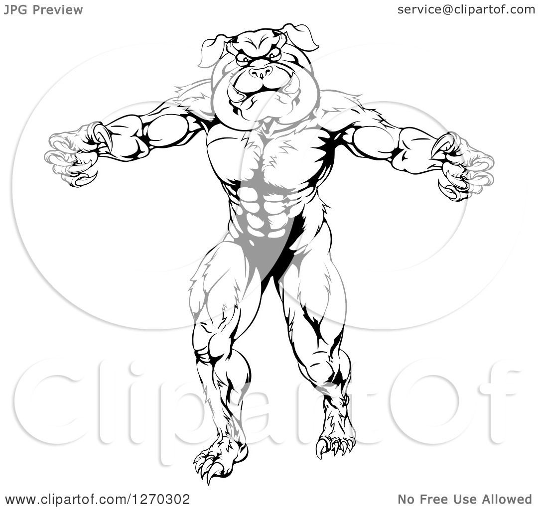 Clipart Of A Black And White Angry Muscular Bulldog Man