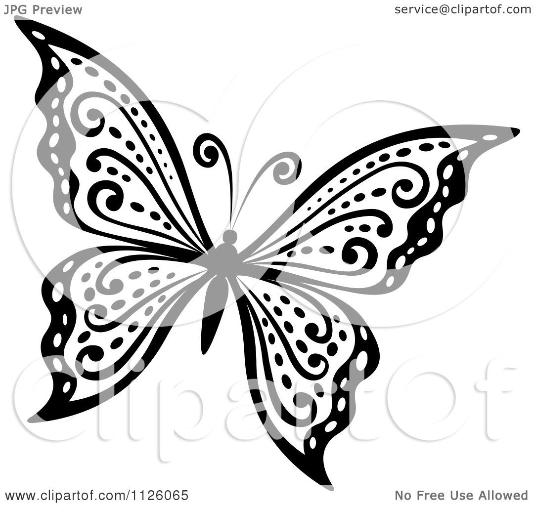 Clipart Of A Black And White Butterfly 29