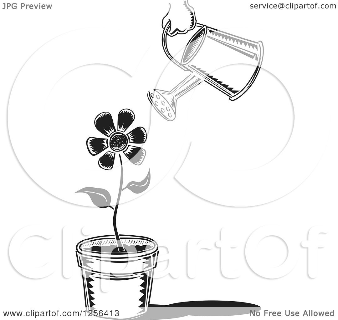 Clipart Of A Black And White Can Watering A Potted Flower