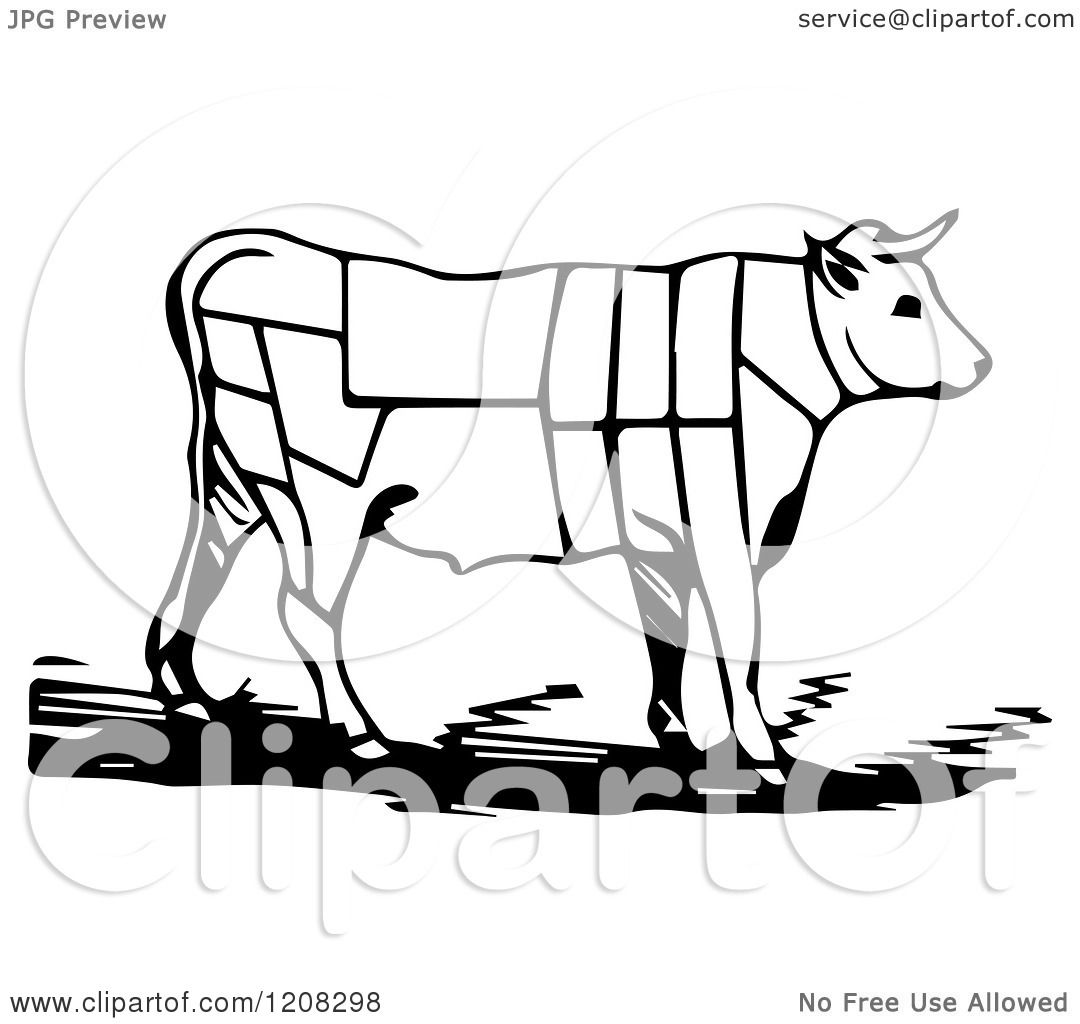 Clipart Of A Black And White Cow With Butcher Sections Of