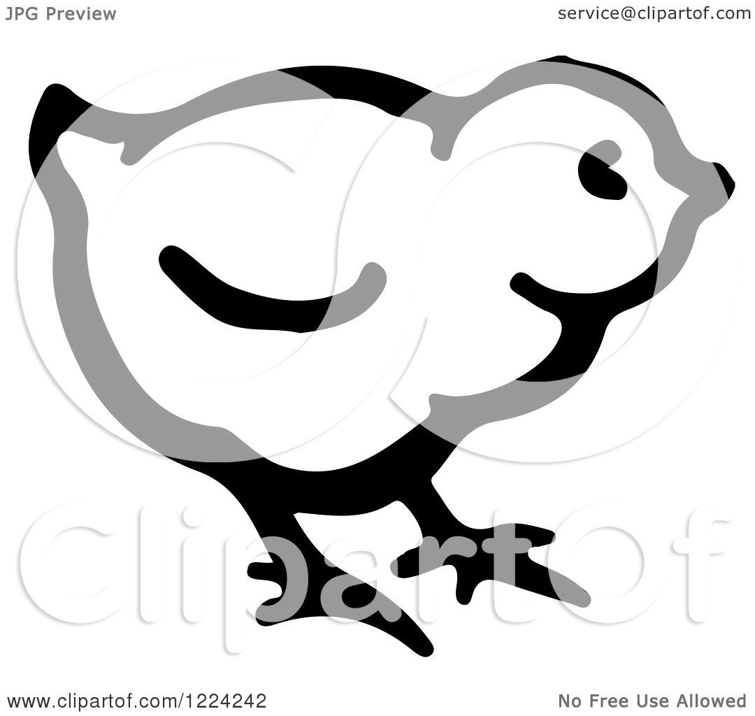 Clipart Of A Black And White Cute Baby Chick