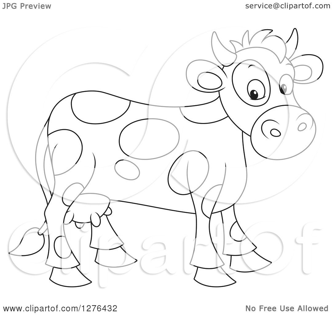 Clipart Of A Black And White Cute Spotted Cow