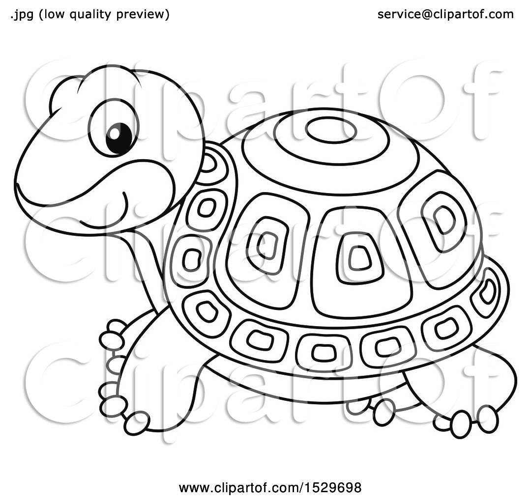 Clipart Of A Black And White Cute Tortoise