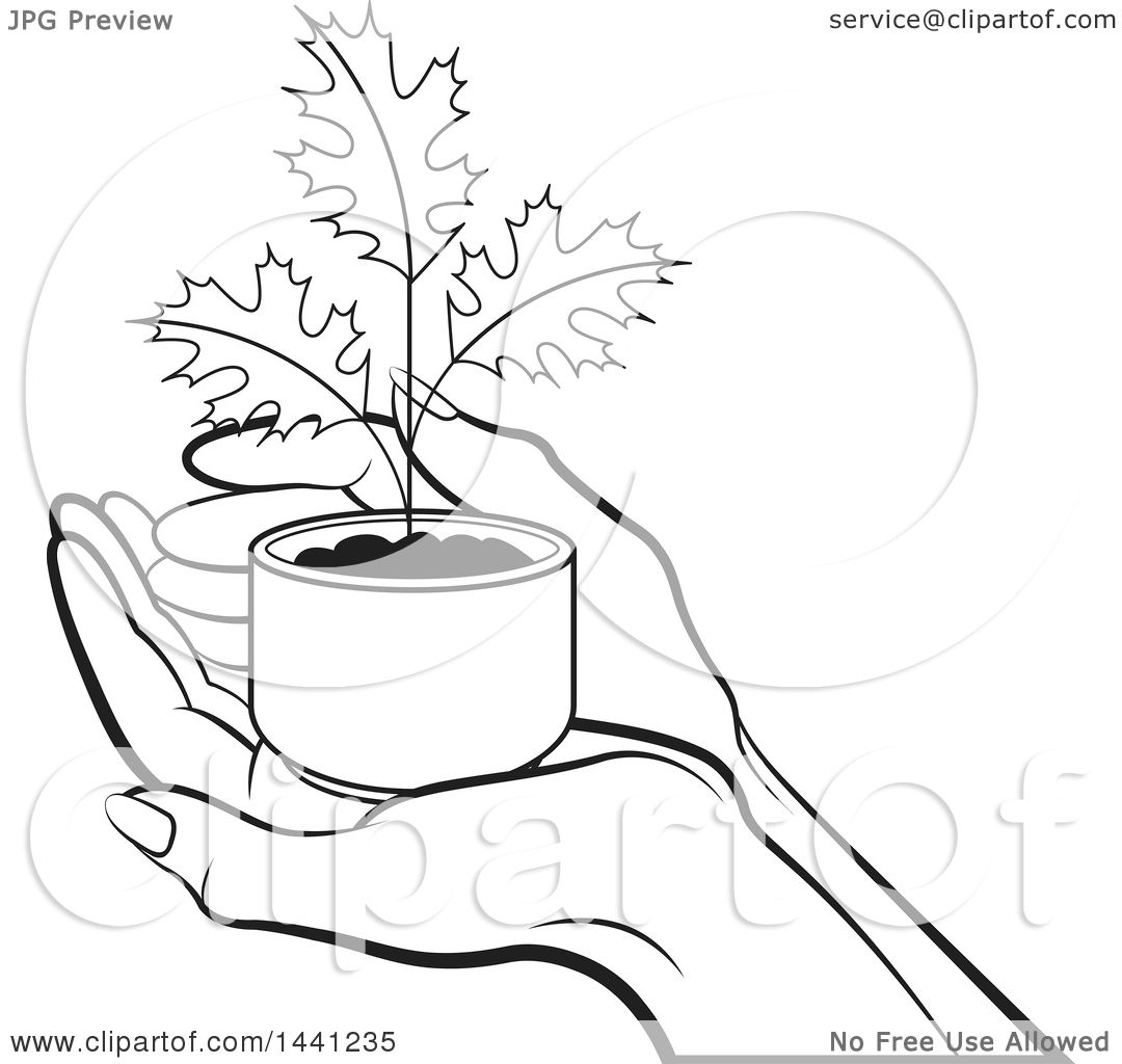 Clipart Of A Black And White Hand Holding A Seedling Maple