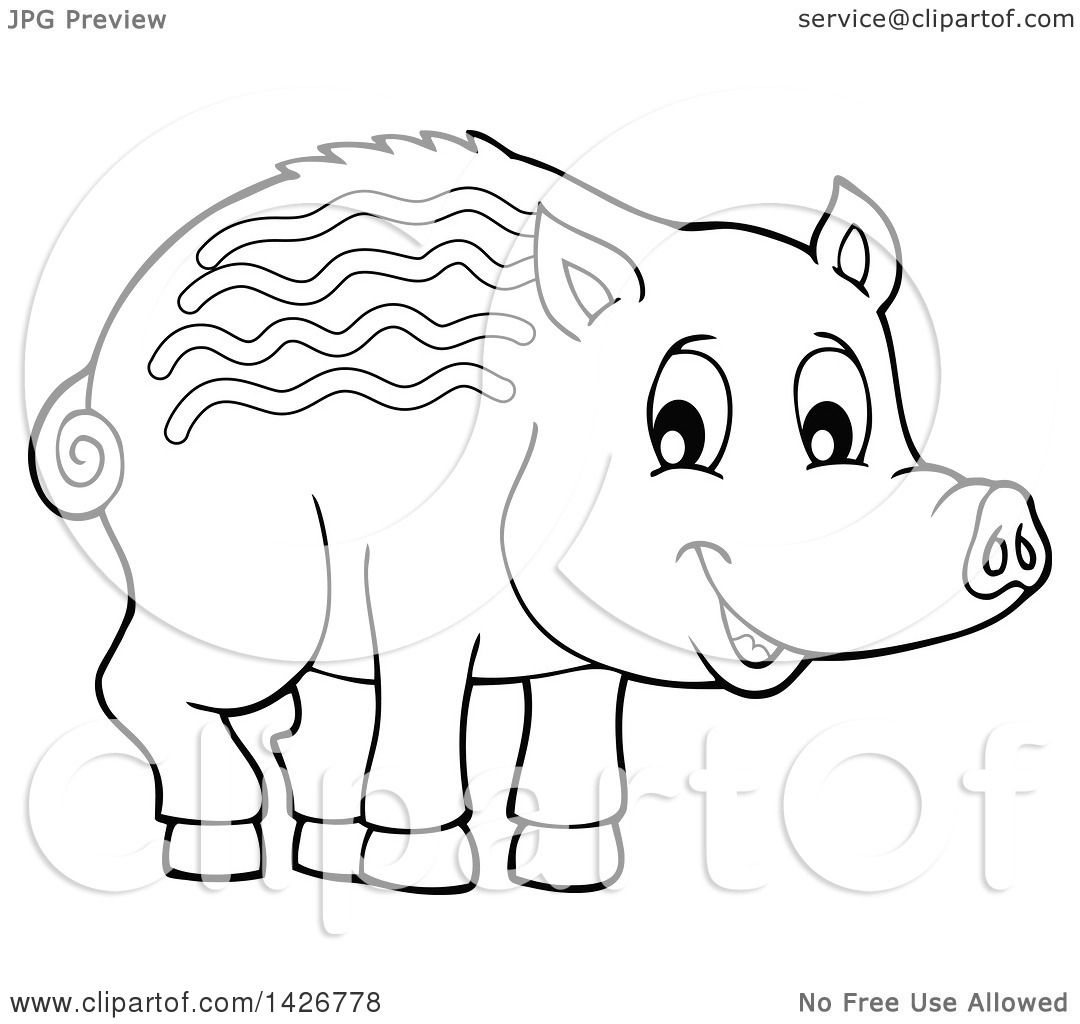 Clipart Of A Black And White Lineart Razorback Boar Piglet