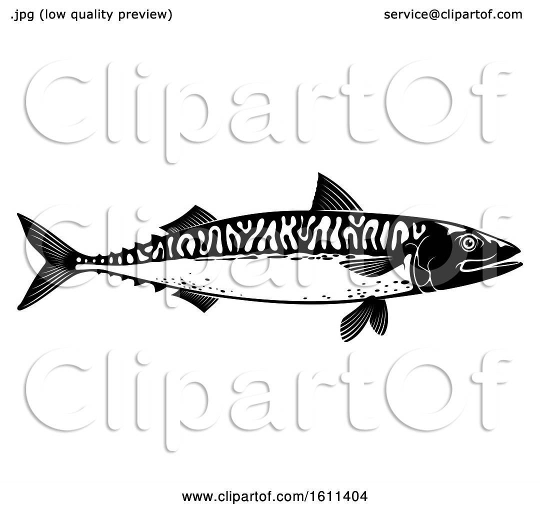 Clipart Of A Black And White Mackerel Fish
