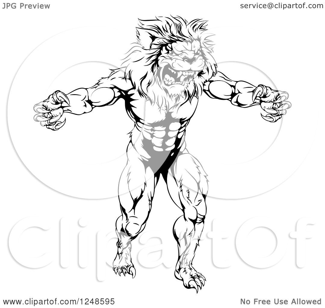 Clipart Of A Black And White Muscular Male Lion Mascot