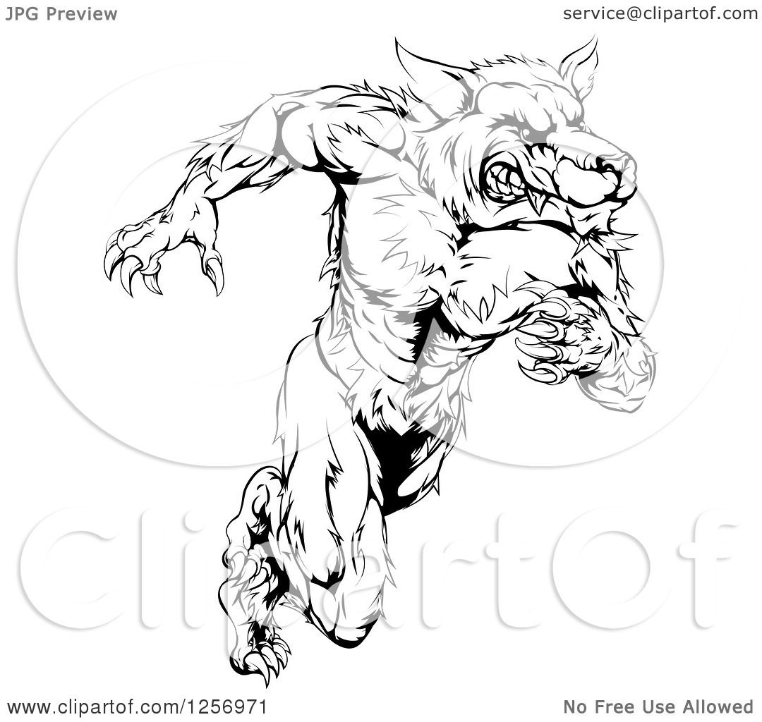 Clipart Of A Black And White Muscular Wolf Man Running