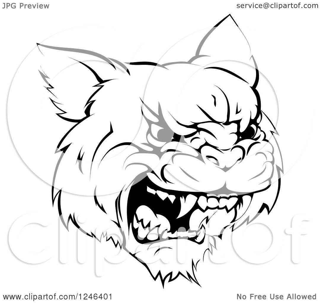 Clipart Of A Black And White Roaring Aggressive Bobcat
