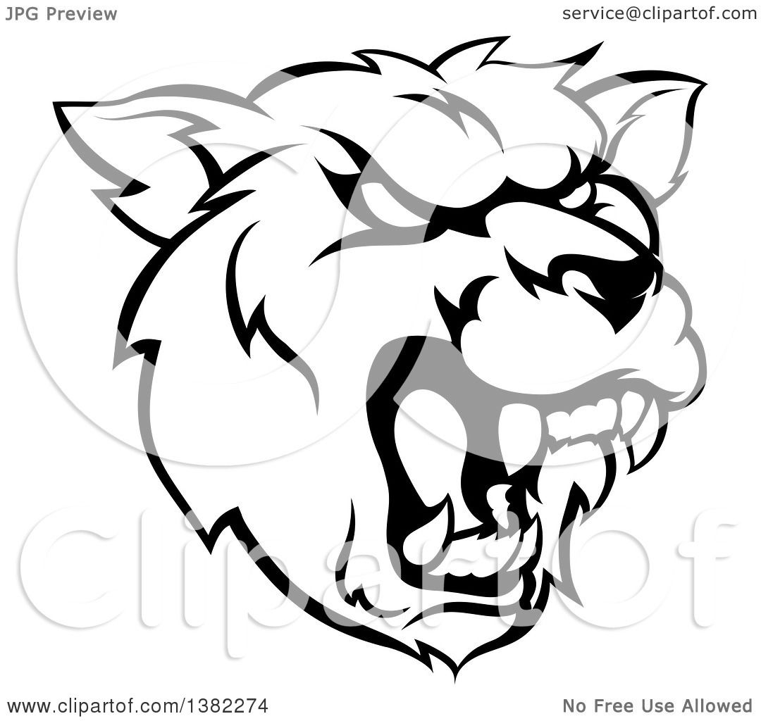 Clipart Of A Black And White Roaring Grizzly Bear Mascot
