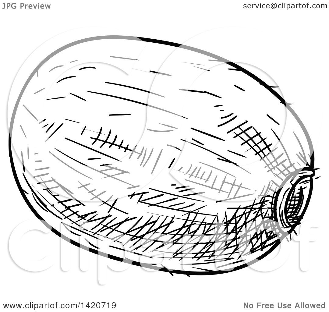 Clipart Of A Black And White Sketched Kiwi Fruit