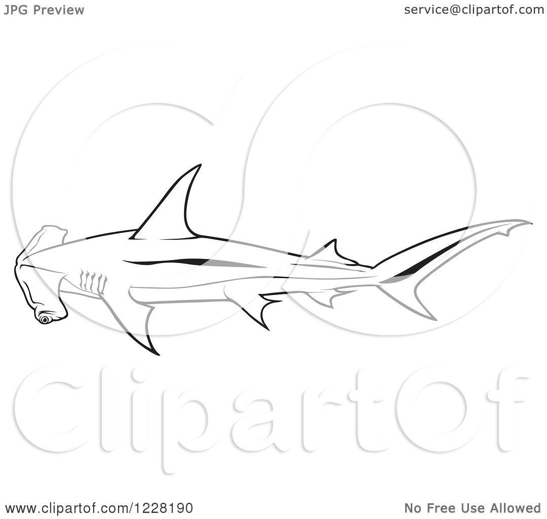 Clipart Of A Black And White Smooth Hammerhead Shark