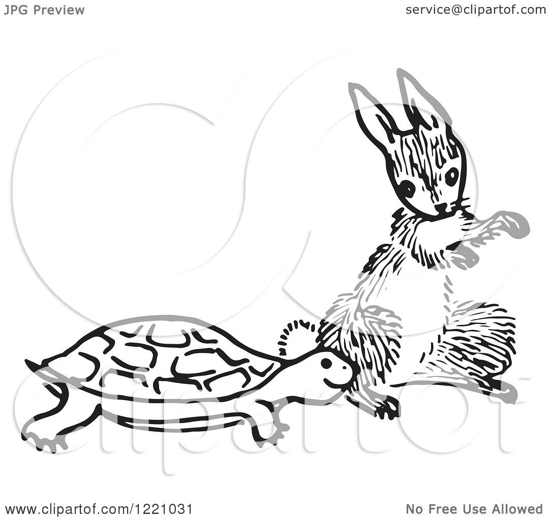 Clipart Of A Black And White Tortoise And Hare
