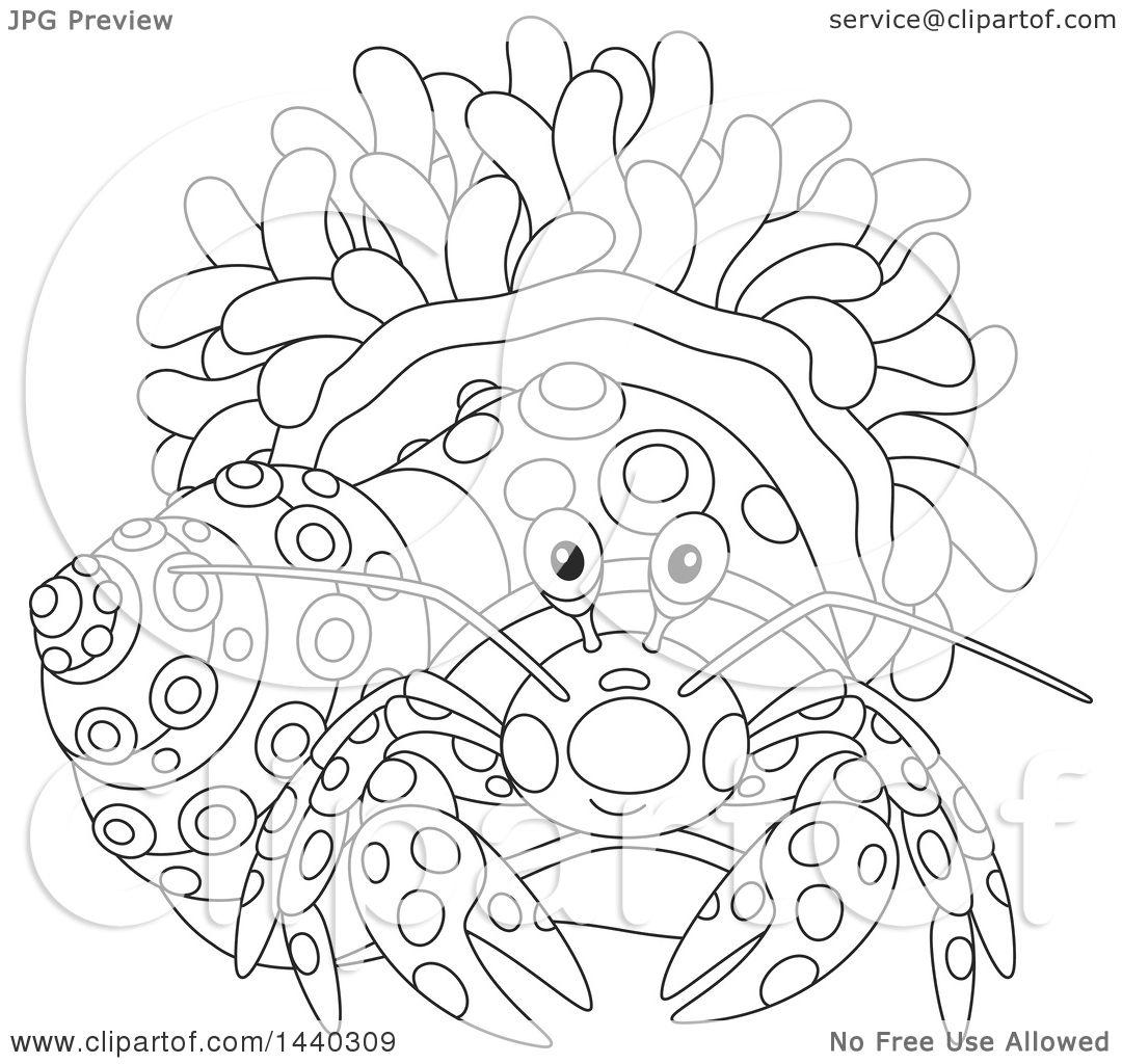 hermit crab clipart