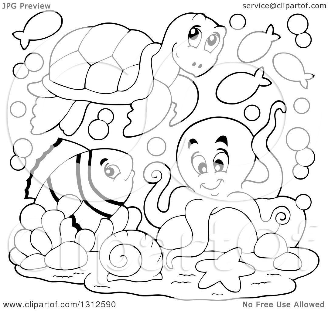 Clipart Of A Cartoon Black And White Sea Turtle Anenome