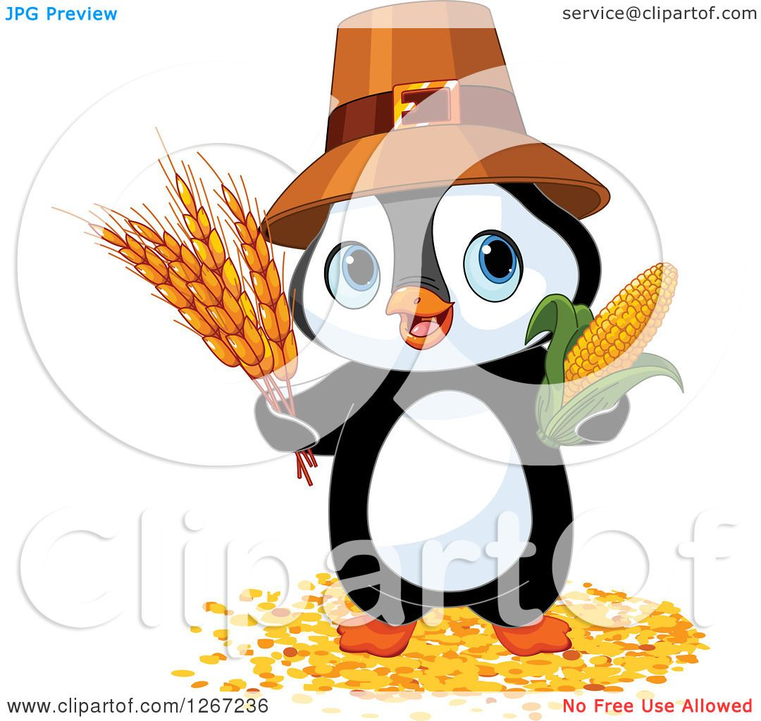 Clipart Of A Cute Thanksgiving Pilgrim Penguin With Harvest Wheat And Corn