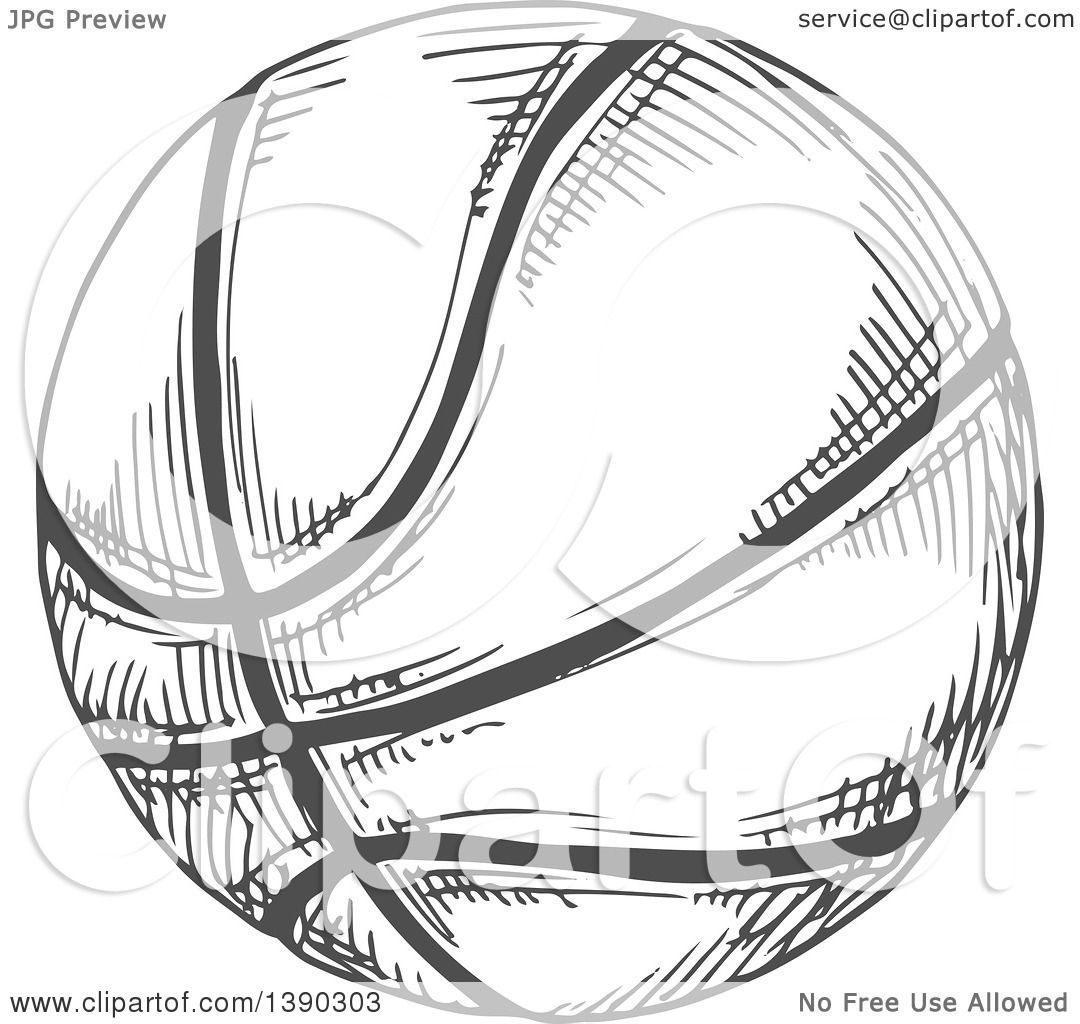 Clipart Of A Gray Sketched Basketball