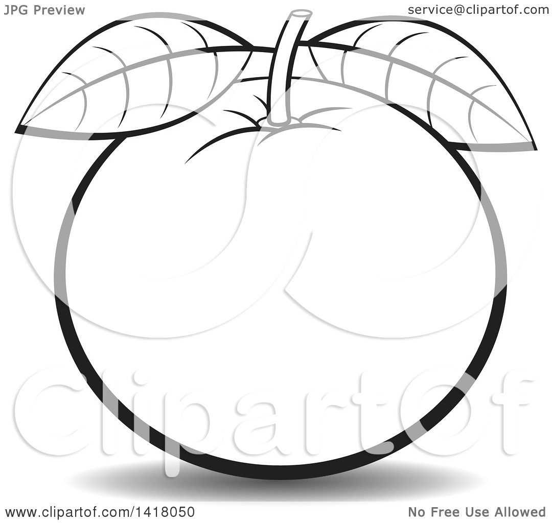 Clipart Of A Lineart Orange