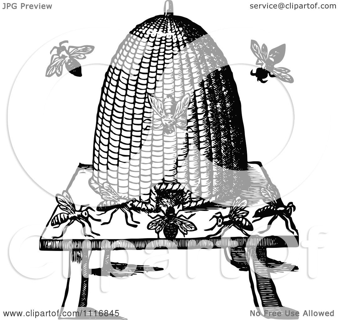 Clipart Of A Retro Vintage Black And White Conical Bee