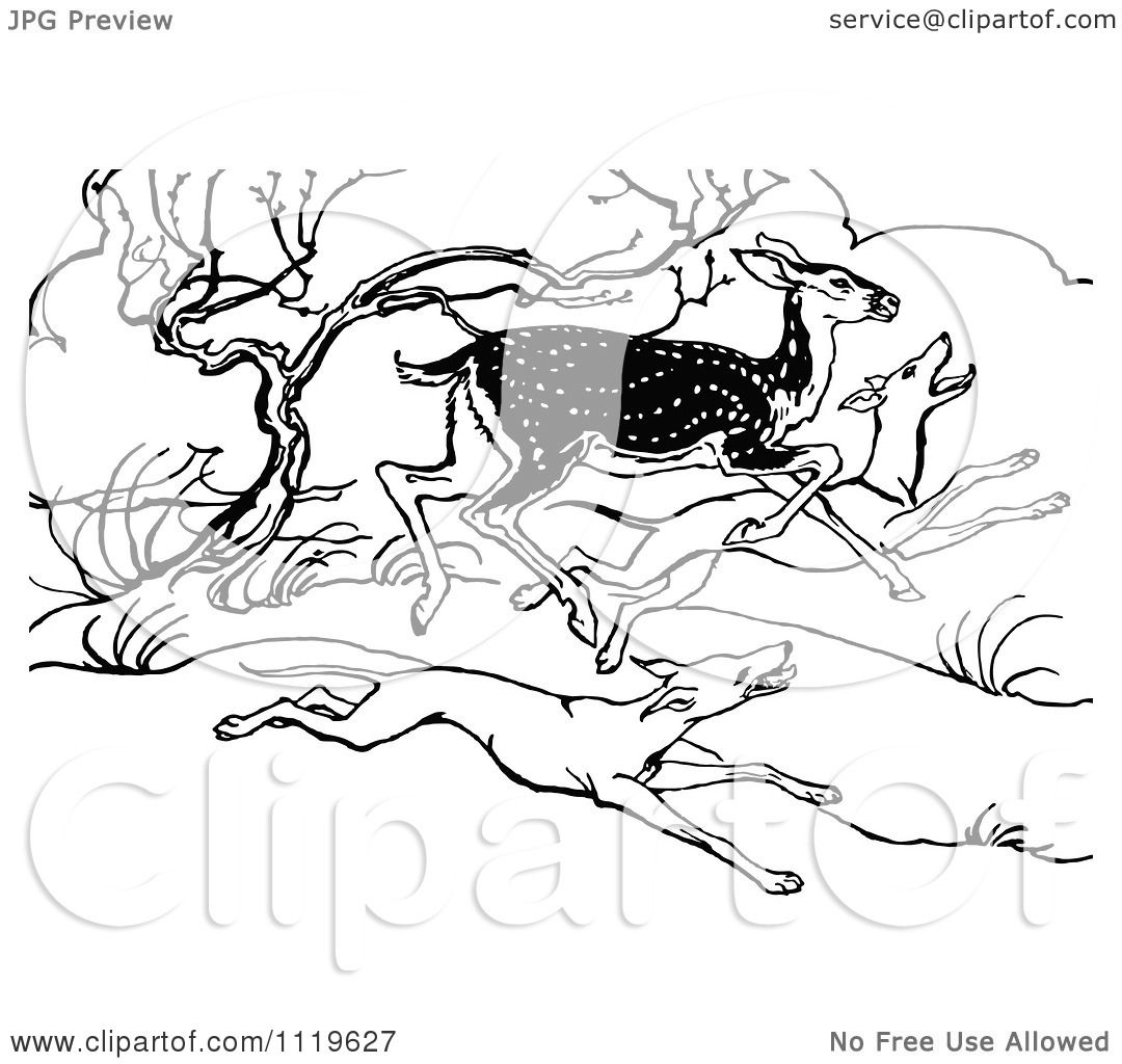 Clipart Of A Retro Vintage Black And White Deer Running