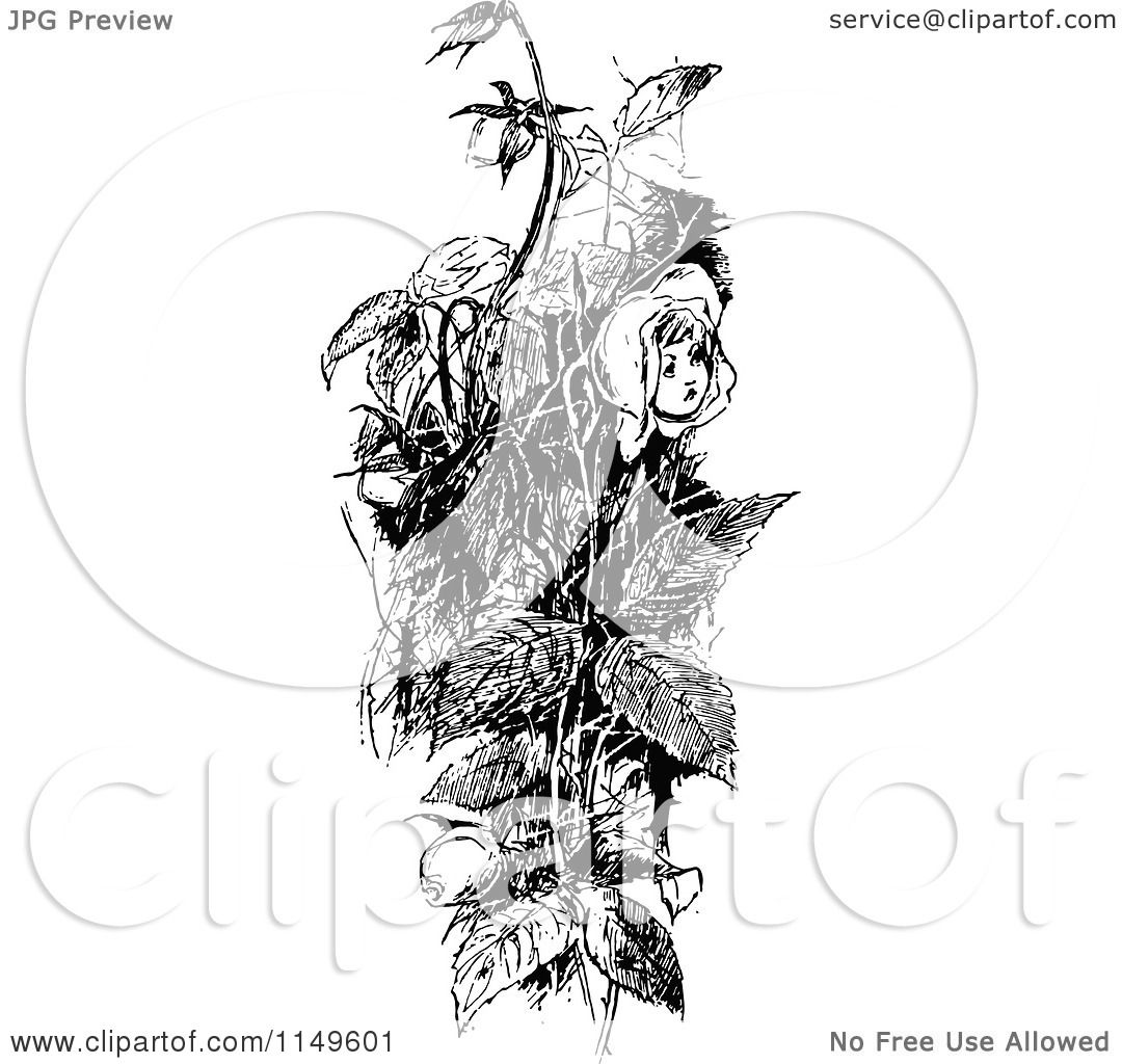 Clipart Of A Retro Vintage Black And White Girl Rose In A Bush