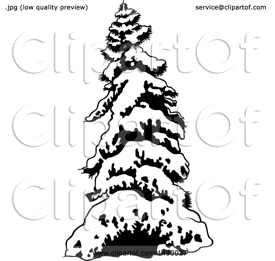 Clipart Of A Snow Flocked Evergreen Tree