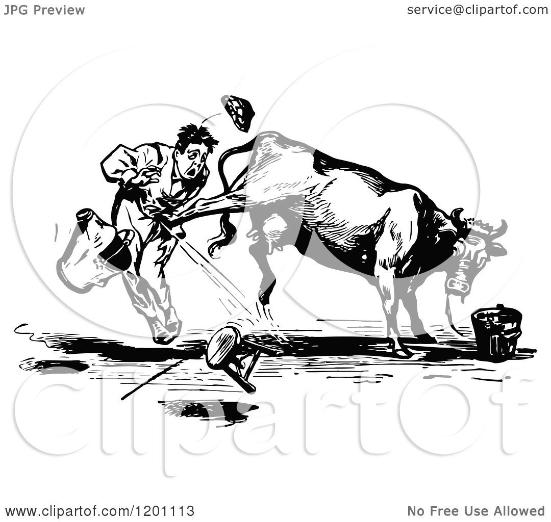 Clipart Of A Vintage Black And White Cow Kicking A Man