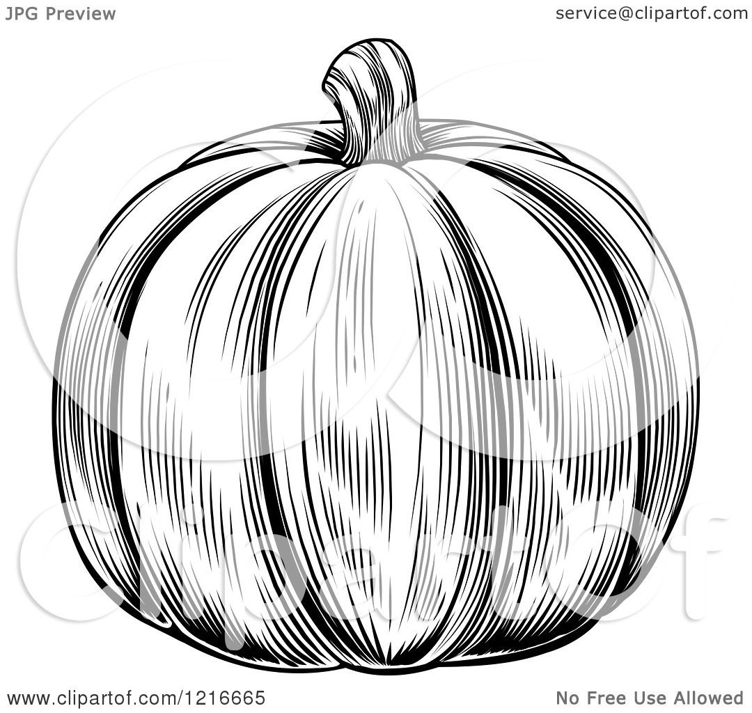 Clipart Of A Vintage Woodcut Styled Pumpkin In Black And