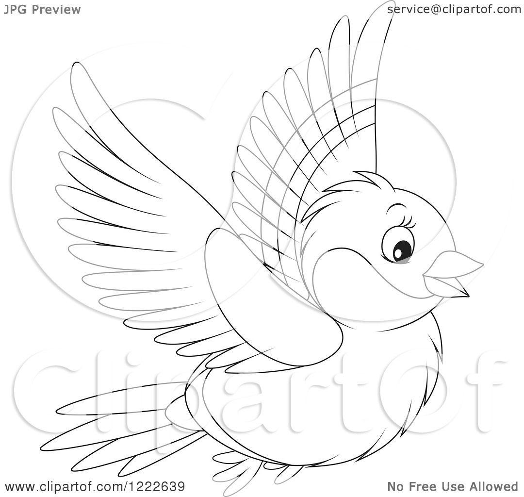 Clipart Of An Outlined Cute Bullfinch Bird Flying