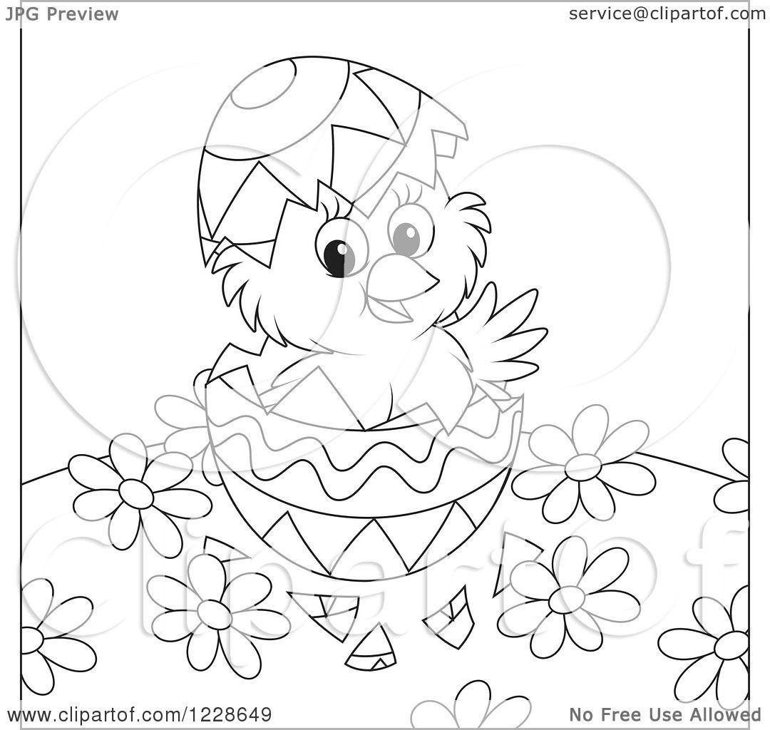 Clipart Of An Outlined Hatching Chick In An Easter Egg