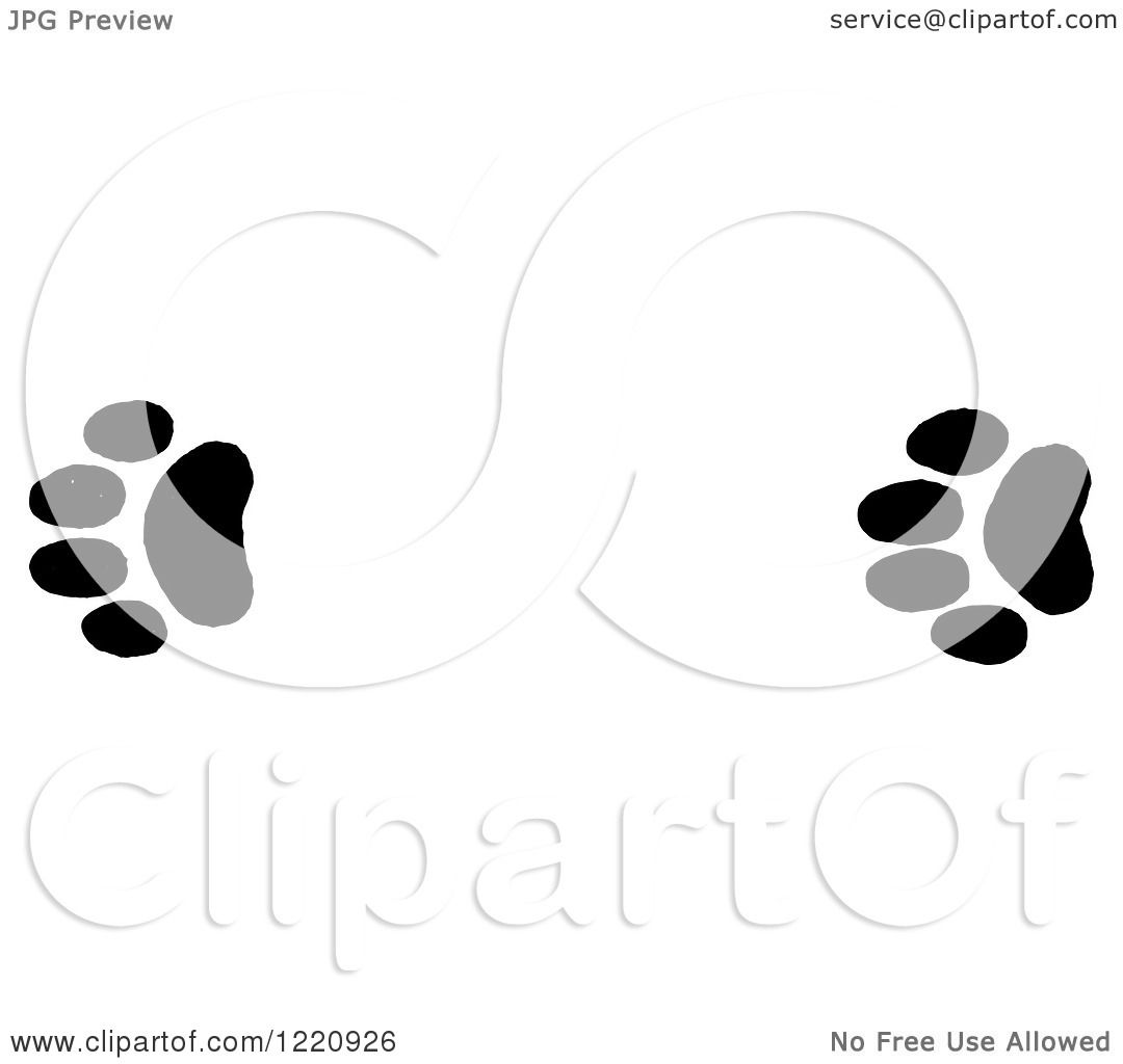 Clipart Of Black And White Bobcat Tracks