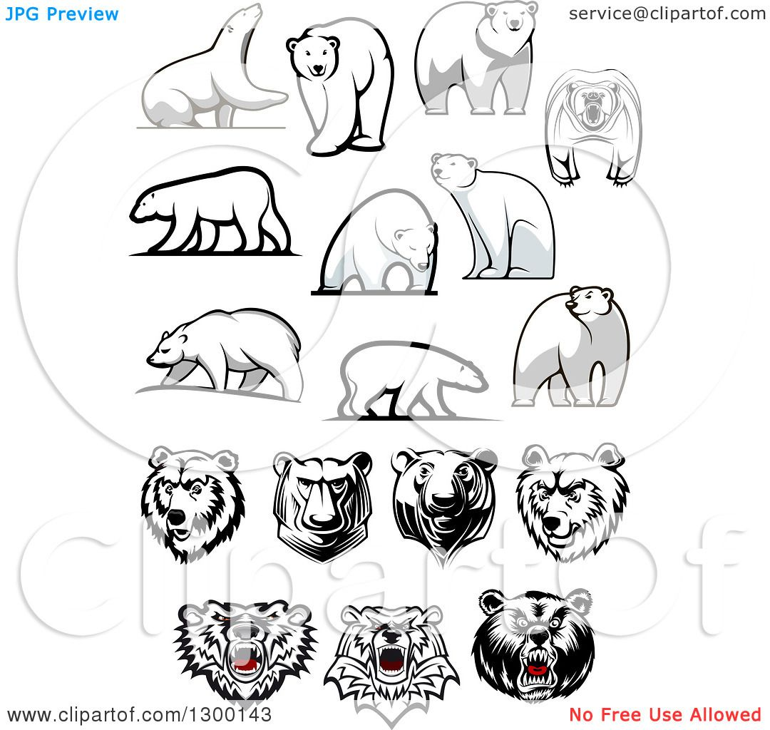 Clipart Of Polar Bear Designs