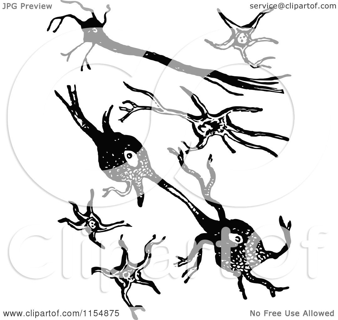 Clipart Of Retro Vintage Black And White Cellular Matter