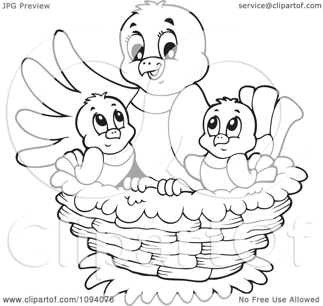 Clipart Outlined Bird And Chicks In A Nest