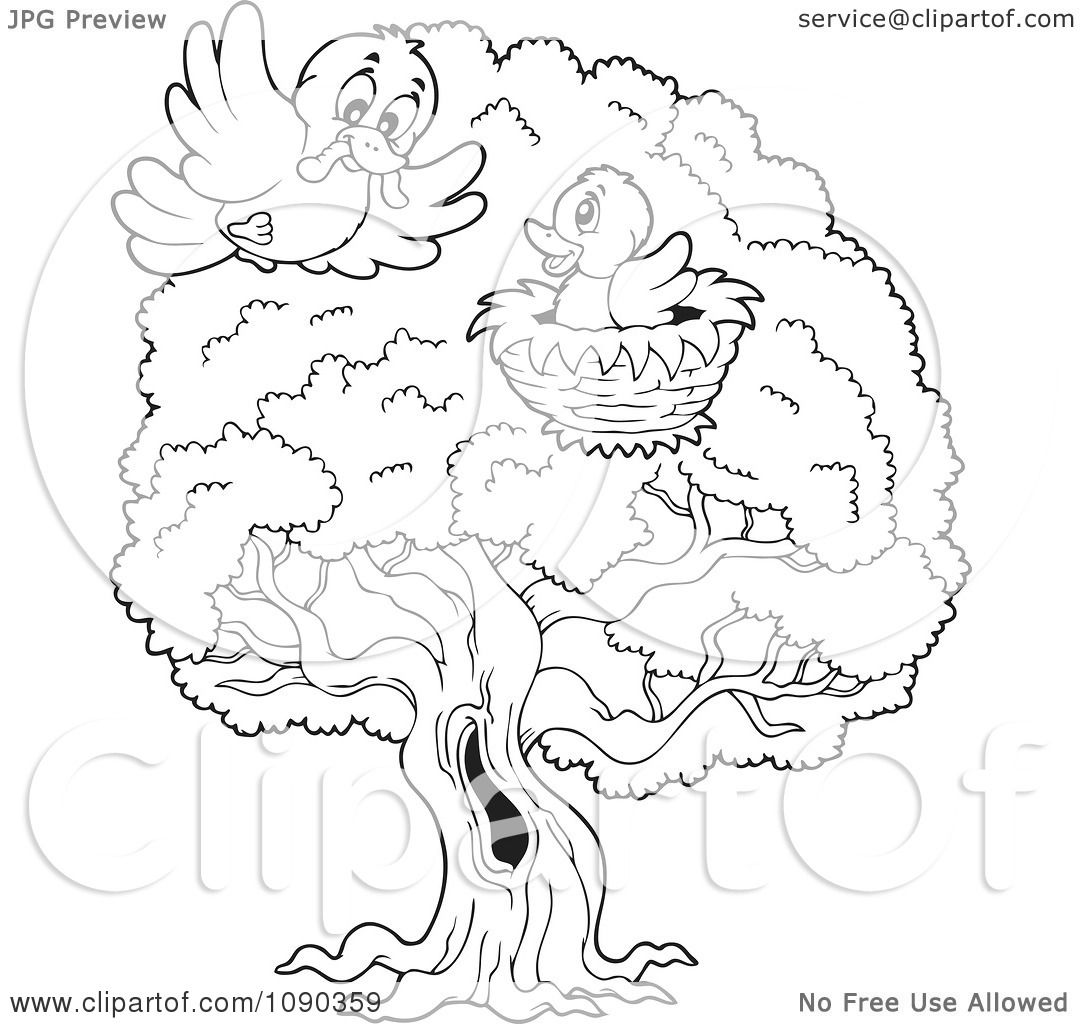 Clipart Outlined Birds In A Tree Nest One Delivering A