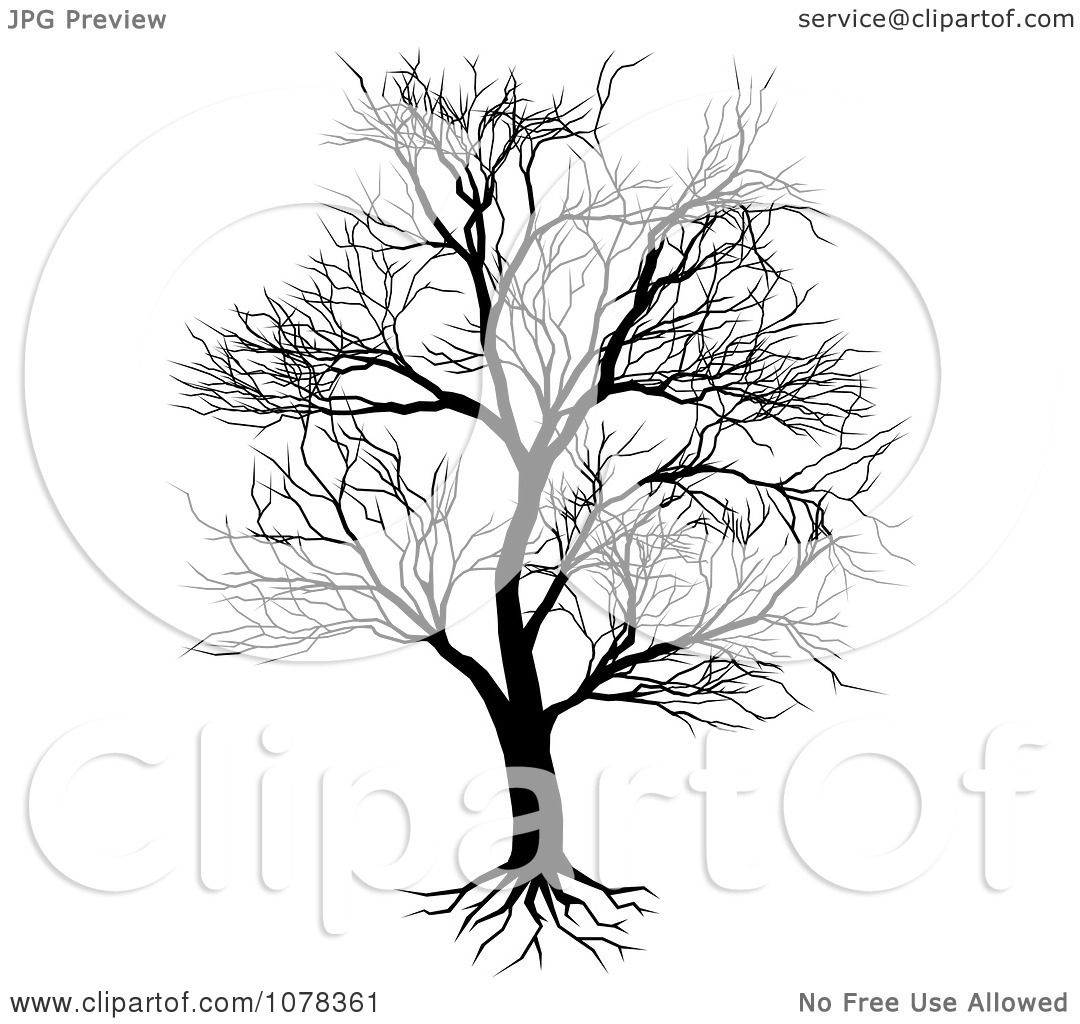 Bare Tree With Roots Clip Art Cliparts
