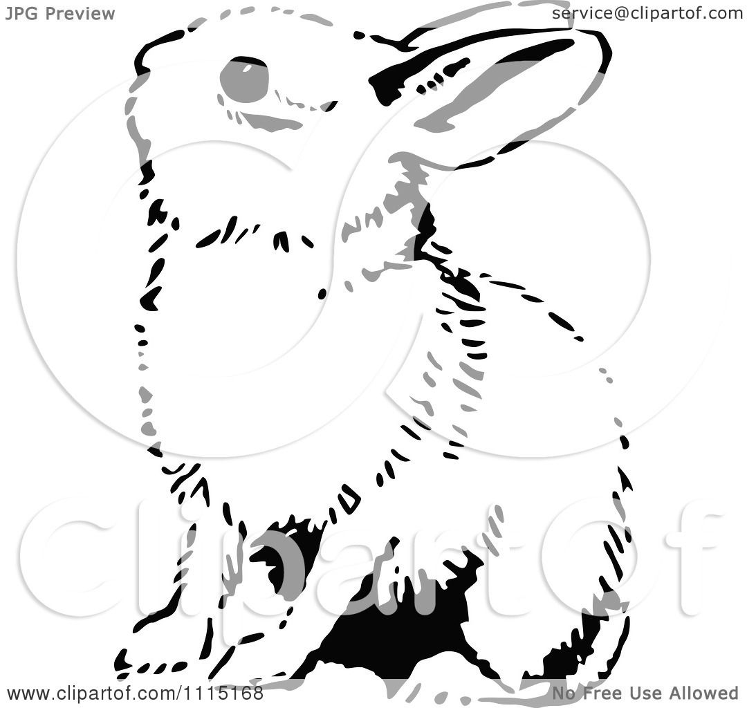 Clipart Vintage Black And White Bunny